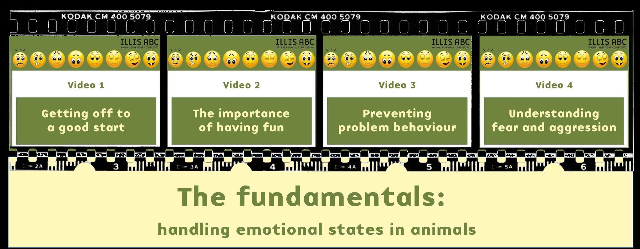 Why emotions matter – Illis ABC